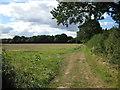 SU7794 : Chiltern farmland by don cload