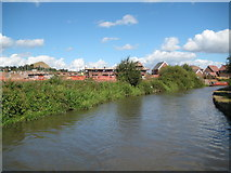 SP3492 : Coventry Canal: Reach east of Camp Hill by Nigel Cox