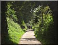 SY2893 : Lane to Combpyne by Derek Harper