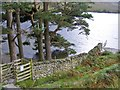 NY1617 : Crummock Water Gate by Gordon Griffiths