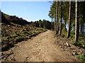 SY1086 : High Peak, deforestation by Anthony Vosper