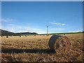 NN9559 : Barley straw bales at Kinnaird by Karl and Ali