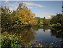 SY2793 : Pond at Lower Bruckland Trout Fishery by Derek Harper