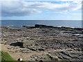 X7397 : Coastal rocks at Hook Head by Oliver Dixon