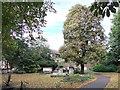TQ3877 : St Alfege Park, Greenwich by PAUL FARMER