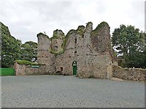 S7114 : Dunbrody Castle by Oliver Dixon