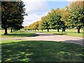TL0835 : Avenue of trees - Wrest Park by Paul Gillett
