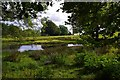 SO3005 : The little pond on the Northern edge of SO3005, above Pen-y-stair by Pat Macleod
