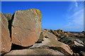 SV8907 : Boulder near Hoe Point by David Lally