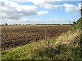 TF9731 : Fields beside Snoring Road, east of Kettlestone by Evelyn Simak