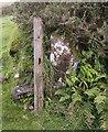 SN1631 : Redundant stone gate post (number  ) by chris whitehouse
