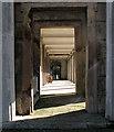 TQ2382 : Kensal Green Cemetery: colonnade by John Sutton
