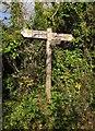 SX9267 : Sign on the John Musgrave Heritage Trail by Derek Harper