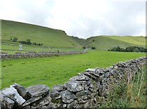 SK1482 : View from Buxton Road near its junction with Arthur's Way, Castleton by Derek Voller