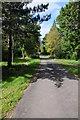 ST6592 : No through road at Rockhampton by Philip Halling