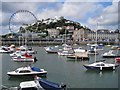 SX9163 : Old Harbour, Torquay by Richard Dorrell