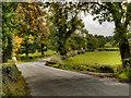 SJ8779 : Wilmslow Road (A538) by David Dixon