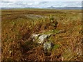 NS4480 : Possible remains of a structure by Lairich Rig