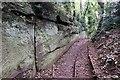 SJ4874 : Sandstone Outcrop at Helsby Quarry (Mountskill Quarry) by Jeff Buck