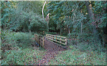 TL4102 : Footbridge over Cobbin's Brook in Brookmeadow Wood by Roger Jones