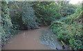 TL4001 : Cobbin's Brook: view from bridge by Roger Jones