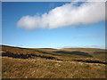NY4615 : The peaty slopes of Long Grain by Karl and Ali