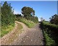 SX8766 : John Musgrave Heritage Trail north of North Whilborough by Derek Harper