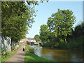 SJ8354 : Trent and Mersey Canal near Hardings Wood, Staffordshire by Roger  Kidd