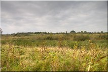 NY1039 : Looking over a pond from the track from Oughterside village by Mike Harris