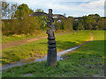 SJ9093 : Trans Pennine Trail Millennium Milepost, Reddish Vale Country Park by David Dixon