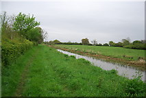 TQ0524 : Wey and Arun Canal (disused) by N Chadwick
