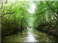 SP0170 : Narrowboat heading north from Shortwood Tunnel by Christine Johnstone