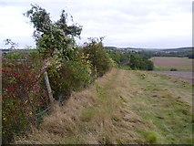 TQ5365 : Above the railway near Eynsford by Marathon
