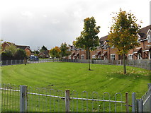SO7251 : Open space on Damson Way by Peter Whatley