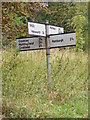 TM3377 : Roadsign on Godfrey's Hill by Adrian Cable