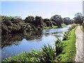 SU8602 : Chichester Canal near Donnington by Paul Gillett