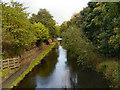 SD8911 : Rochdale Canal by David Dixon