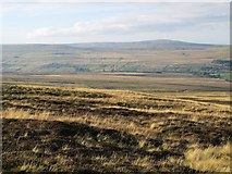 NY7340 : Alston Moor north of Black Band by Mike Quinn