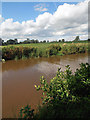 SJ5647 : Cheshire farmland by Row17
