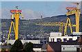 J3575 : Samson and Goliath, Belfast (2) by Albert Bridge
