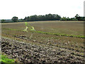 TM1898 : Harvested field by Flordon Hall by Evelyn Simak