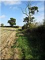 SP9429 : Path to Hill Farm by Philip Jeffrey