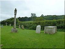 ST5906 : St Mary, Melbury Bubb: churchyard (I) by Basher Eyre