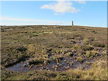 NY8154 : Moorland below the northern Allendale lead smelting flue chimney (2) by Mike Quinn