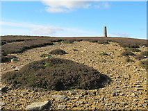 NY8154 : Eroded moorland below the northern Allendale lead smelting flue chimney by Mike Quinn