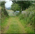 ST3290 : Locked gates at the end of a track near Broad Pill, Caerleon by Jaggery