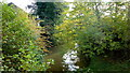 ST7293 : Little Avon River at Charfield Mills by Jonathan Billinger