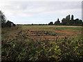 TL4360 : University Farm, West Cambridge by Hugh Venables