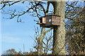 SD4017 : A very posh bird box by Ian Greig