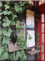 TL4881 : Overgrown public telephone by Hugh Venables